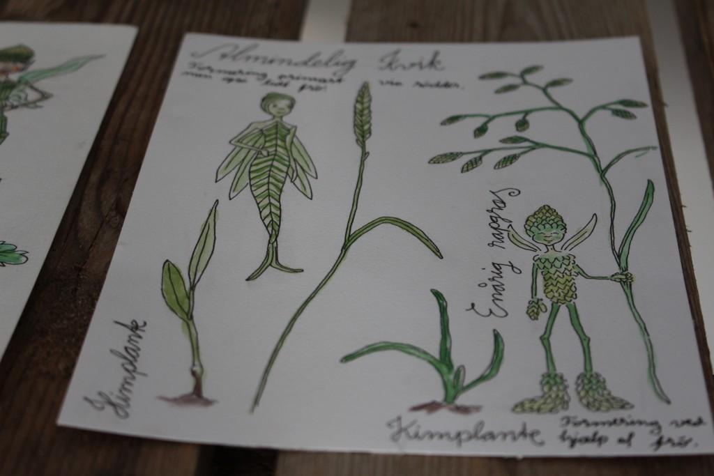 Almindelig kvik og enårig rapgræs
