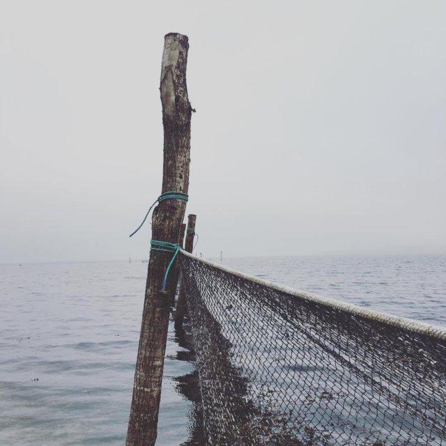 Besgte havet i dag havet